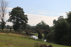 IMG_4714 (alicemaryfox) Tags: yorkshire sculpture park kaws henri moore cattle sheep art discovery water bridge stately home national