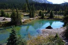 DSC_6548 (AmitShah) Tags: banff canada nationalpark