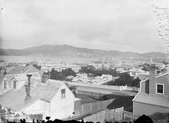 3; Wellington from Hill Street - Circa 1890 (Wellington City Council) Tags: wellington historicwellington 1800s 1900s 1950s