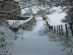 The path of pure white snow (Lancashire Lass Photo's) Tags: trees winter snow fence countryside gate december quote farm lancashire explore gateway drystonewall longridge milelane ribblevalley blinkagain billingtonsfarm lancashirelassphotos suebristo