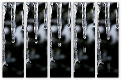 Drip Drop (Gareth Priest) Tags: uk winter inspiration snow cold art ice water collage wales frozen droplets nikon focus experimental dof bokeh creative cardiff icicle drips d5100
