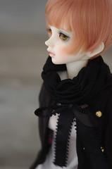 Try something different (Crikishyuya_) Tags: iris alice volks