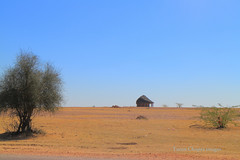 IMG_0799 (Tarun Chopra) Tags: travel india canon photography gurgaon rajasthan touristattractions indiatravelphotography rajasthaninwinters canoneosm canonmirrorlesscamera gurugram