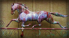 horse of a different color (MissyPenny) Tags: sculpture horse art metal pennsylvania metalwork decor lahaska pdlaich missypenny