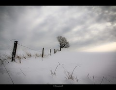 useless fence (Sauerland) (bernd obervossbeck) Tags: schnee winter snow tree fence landscape zaun minimalistic baum sauerland minimalistisch hochsauerland minimalisticlandscape canoneos60d mygearandme mygearandmepremium