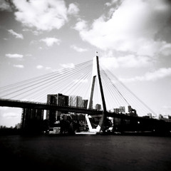 Glebe Island Bridge (Kerrie McSnap) Tags: bridge sky blackandwhite bw 120 film mediumformat square harbor holga lomo lomography harbour toycamera sydney grainy sydneyharbor sydneyharbour whitebay glebeislandbridge kodaktmax kerriemcsnap