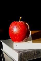 red apple. (`Hanna) Tags: red art apple canon rojo texas manzana houston books libros allrightsreserved katytexas eosrebelt3i alejandraesanz