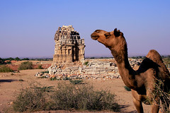 Bohdesar Temple, Thar (Iqbal.Khatri) Tags: travel pakistan india temple village desert traditional religion border culture hindu jain sindh thar southasia tharparkar canon400d travelandplaces nagarparkar beautyofworld iqbalkhatri largestdesert