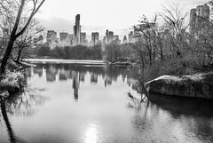 DSC_1406 (AB--Photography) Tags: new york white ny newyork black apple blackwhite big zwartwit centralpark manhattan zwart wit bigapple abphotography abphotograpy