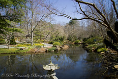 Garden Slow Shutter (Alpha Amateur) Tags: flowers garden georgia landscape japanese sony pools alpha ponds daffodils a77 ballground sonya77 sal1650f28 sony1650