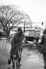 sarah and robin, parking lot. (cafemama) Tags: blackandwhite bw film march wolf kodak taxidermy kodaktrix bandw shootfilm 2013 sooc stealingtime sarahbartell wolfheaddress march2013 stealingtimemag stmrelations stealingtimemagazine