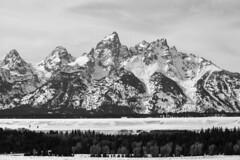 The Grand Teton Mountains (WildlifeandMore.com) Tags: house mountains mercedes moving sold grand mercedesbenz rockymountains goodbye teton tetons jacksonhole movingout tetonvalley grandtetonmountains movingoutwest