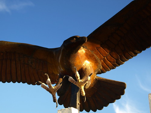 The National Memorial Arboretum - Eagle