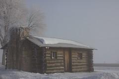 Cliche Cabin (mazzmn) Tags: show door winter chimney house mist cold building ice window fog cabin frost logs explore logcabin hcs sooc