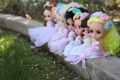 """""""Pretty little maids ... All in a Row ..."""""""