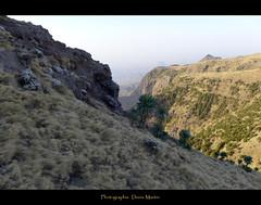 Simien (denismartin) Tags: africa camp trek gr baboon ethiopia footpath ibex gelada ethiopie amhara debark geech  sankaber denismartin walya sentierdegranderandonne cheneck fernwanderwegs langeafstandswandelpad