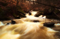 Spring Flow [Explored] (ryand1975) Tags: longexposure trees nature water spring woods nikon rocks stream bfg d5100