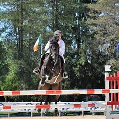 DSC_1037 (2) (ploufjf_64) Tags: paus show jumping chevaux pau 2016