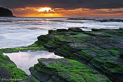 Turimetta Beach Sunrise (renatonovi1) Tags: turimetta beach sunrise rocks moss green sun ray cloud water nature landscape seascape sydney nsw australia coast