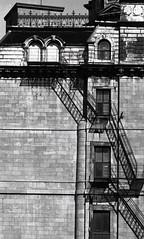 InstitutDesMatelots3-1989 (Daniel Heikalo) Tags: montreal architecturevernaculaire faades qužbec canada québec façades