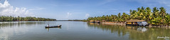 IMG_8131 (shitabhpillai) Tags: river backwaters boat houseboat house fresh kerala india coconut tree sea panorama canon 6d