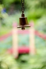 Ding (bigbluewolf) Tags: nikon d7000 biddulph grange nationaltrust national trust nt garden gardens sigma 18250 18250mm