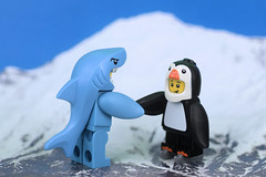Shaking Sharky's shaky hands (Lesgo LEGO Foto!) Tags: lego minifig minifigs minifigure minifigures collectible collectable legophotography omg toy toys legography fun love cute coolminifig collectibleminifigures collectableminifigure series16 series 16 penguinboy penguin boy nikkor nikon d5300 60mmf28drmicro