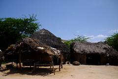 Desert dwelling (shahmurai) Tags: fujifilmxt1 nagarparkar thar sindh pakistan strawhuts