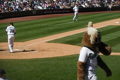 O'Malley Playing for Seager - Aug 24, 2016 (Jeffxx) Tags: seattle mariners safeco baseball moose omalley yankees game 2016 august field kennewick mascot