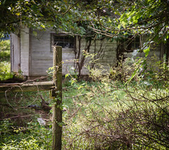 Fairlane Farm-32 (hiker083) Tags: abandoned farmhouse decay decrepit derelict cars vacant oncewashome