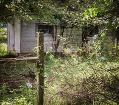 Fairlane Farm-32 (hiker083) Tags: abandoned farmhouse decay decrepit derelict cars vacant oncewashome