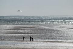 Les salines, Brhal (Isabelle Roquet) Tags: plage lumiere silhouette soleil contrejour ocean mare minimaliste reflets
