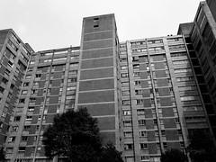 Edificio (puntokom) Tags: blancoynegro blackwhite bw bn arquitectura urbano ciudaddemxico airelibre hacinamiento monocromtico edificio