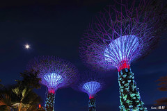 Small little moon + Super Trees (Ken Goh thanks for 2 Million views) Tags: moon gardens by the bya super trees closeup colorful night photography bluehour cityscape singapore pentax k1 sigma 1020