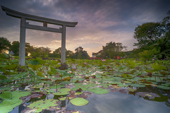 Sunrise (ystan) Tags: sunrise japanese garden weather travel tourism singapore