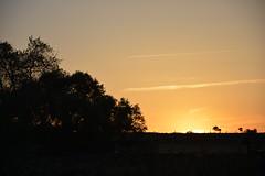 A la salida y puesta del sol en Torrecampo (Manelar1) Tags: puestasdesol salidadelsol torrecampo