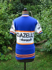 Gazelle2 (akimbo71) Tags: cycling jersey maglia maillot fahrradtrikot pro team equipe