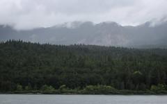 IMG_3514 (kz1000ps) Tags: tour2016 clouds oregon washingtonstate columbiariver border columbiarivergorgenationalscenicarea fog mist grey pinetrees cliffs canyon cascaderange