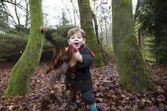 Pelle in 't bos-show (webted) Tags: trees leaves bomen play grandson bos pelle zeist modder spelen panbos kleinzoon hlg gooien
