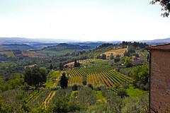Tuscan Countryside (RachelGouk) Tags: travel italy countryside vineyard italia torre wine hills tuscany winecountry tuscan walledtown uniquetownsoftheworld medievaltownsoftheworld
