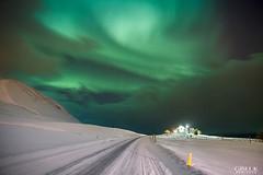 IMG_0006 (Gisli Kristinsson) Tags: wondersofnature