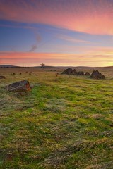 The Calm Lands (ernogy) Tags: california ca sunset usa sunrise canon landscape photography oak folsom wideangle sacramento prairie plains oaktree 1740 erno canon5dmarkiii ernogy