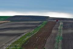 Polje_02 (gregork.) Tags: 2012 jesen avstrija veternica