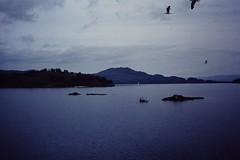 SCOTLAND July 1976 pic74 (streamer020nl) Tags: lake scotland ship paddle dampfer steamer maid schiff lochlomond 1976 dampfschiff stoomboot maidoftheloch stoomschip