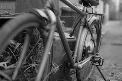 Bicycle in the alley (ogizoo) Tags: 50mm alley nikon sigma  5014 d600 nougata