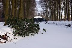 Wezep Wintetime Landed Ijsselvliedt (JaapCom) Tags: camera bridge trees winter snow holland landscape four bomen seasons digitale 4 sneeuw brug van wintertime bos landed veluwe jaap gracht gelderland brugje landgoed jaargetijden wezep 2013 ijsselvliedt werven d5100 jaapcom