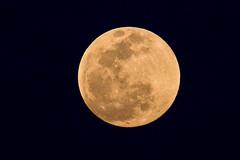 Huahin MOON NY 2010 MV-4192 (jaijaibkk) Tags: moon พระจันทร์