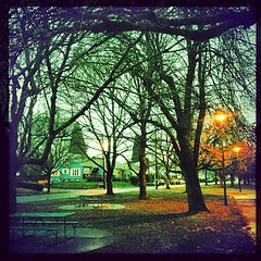 "#trees and picnic benches in. #westmoreland #park #rain #pdx • <a style=""font-size:0.8em;"" href=""https://www.flickr.com/photos/61640076@N04/8423391243/"" target=""_blank"">View on Flickr</a>"