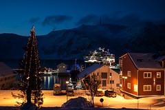 Christmas in the Arctic North (Joko-Facile) Tags: norway harbor norwegen christmastree weihnachtsbaum hafen finnmark hurtigruten honningsvg polarnight polarnacht mstrollfjord