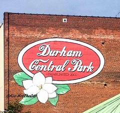 Durham_Foodtrucks09